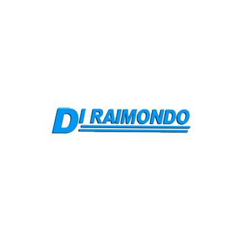 2001 S.r.l. DI RAIMONDO