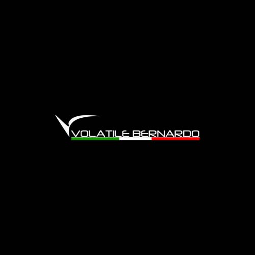 VOLATILE BERNARDO SRL
