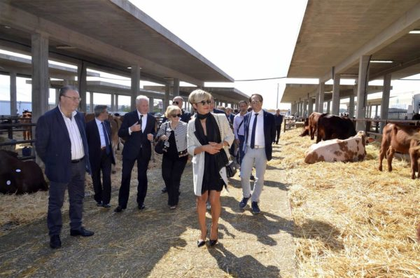 fiera-agricola-mediterranea-2017-25