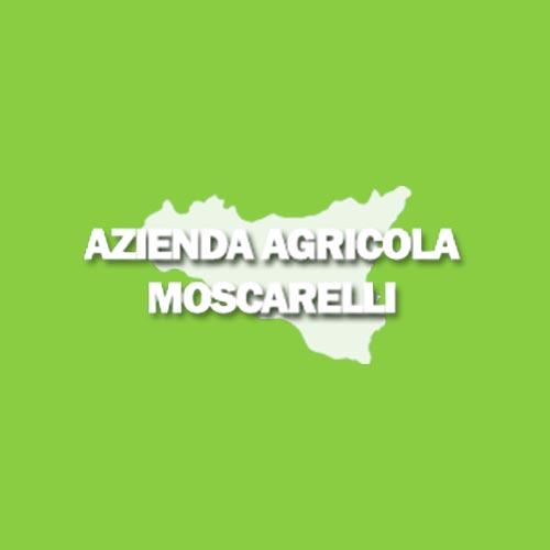 SOC. AGR. AZIENDA MOSCARELLI