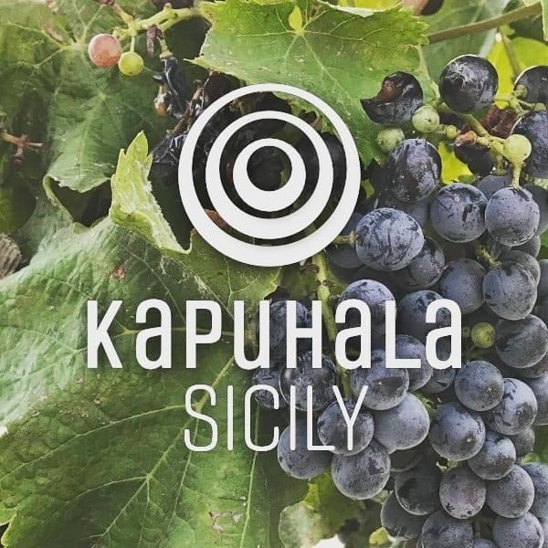 SOC. AGRICOLA TENIMENTI KAPUHALA SRL